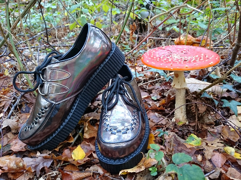 Bronze iridescent creepers